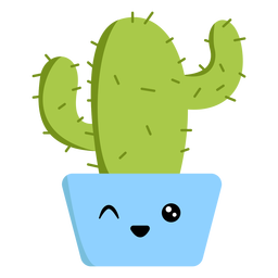 Winking cactus flat