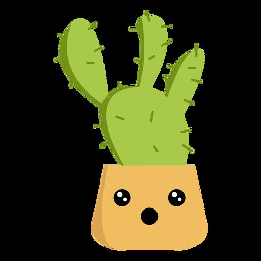 Plano de cactus asombrado