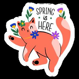 Gato dando boas-vindas a apartamento de primavera
