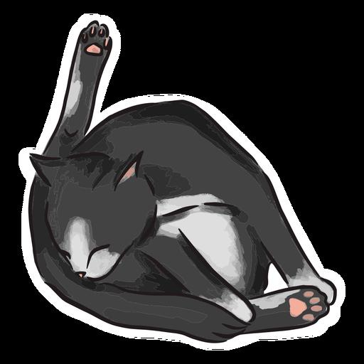 Ilustraci?n de ba?o de gato negro