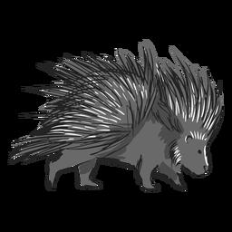 Cute walking porcupine illustration