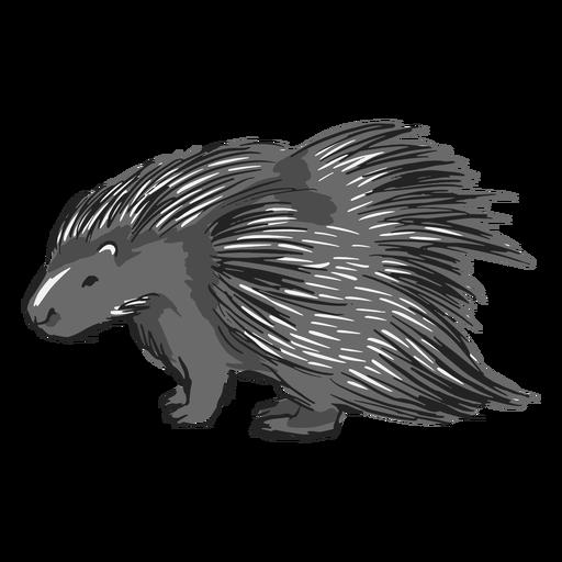 Adorable ilustración de puercoespín