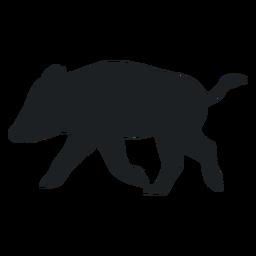 Wild boar walking silhouette