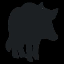 Silhouette wild boar