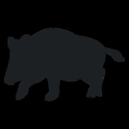 Walking wild boar silhouette