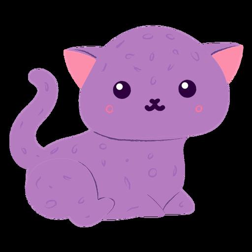 Happy kitten flat