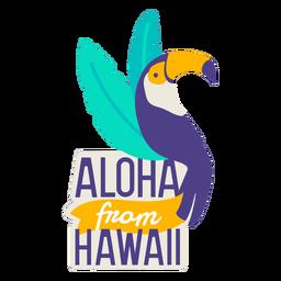 Aloha from hawaii flat