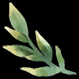 Hermosas hojas de acuarela