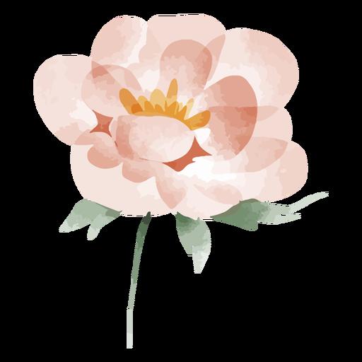 Flor de acuarela floreciendo