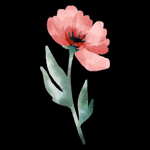 Stem rose watercolor
