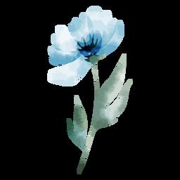 Acuarela flor turquesa