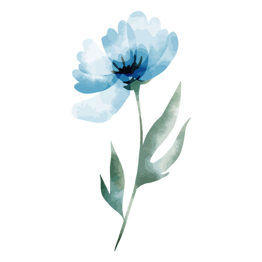 Turquoise flower watercolor