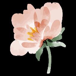 Acuarela de tallo de flor