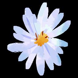 Acuarela de flor de aster