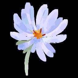 Flor de aster acuarela