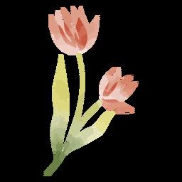 Flor de acuarela de tallo largo
