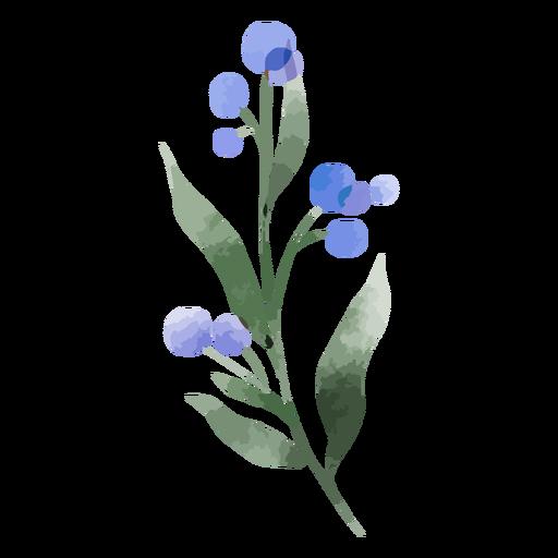 Acuarela de flor de cardo de globo
