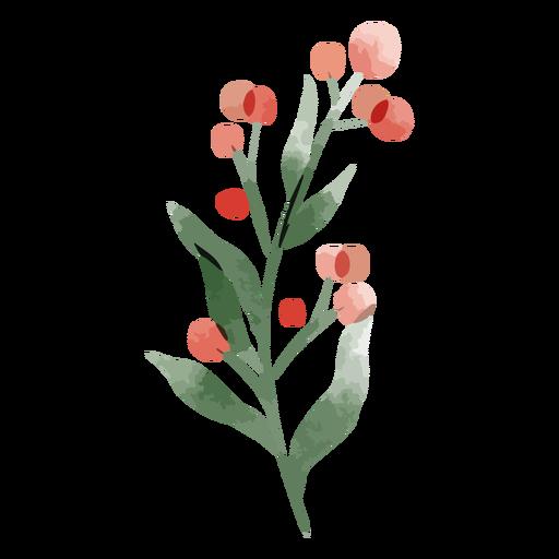 Acuarela de flor redonda roja