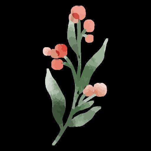Acuarela de flor roja redonda