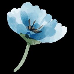 Acuarela de flor de lino perenne