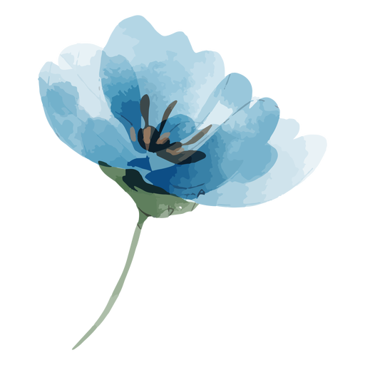 Perennial flax flower watercolor Transparent PNG