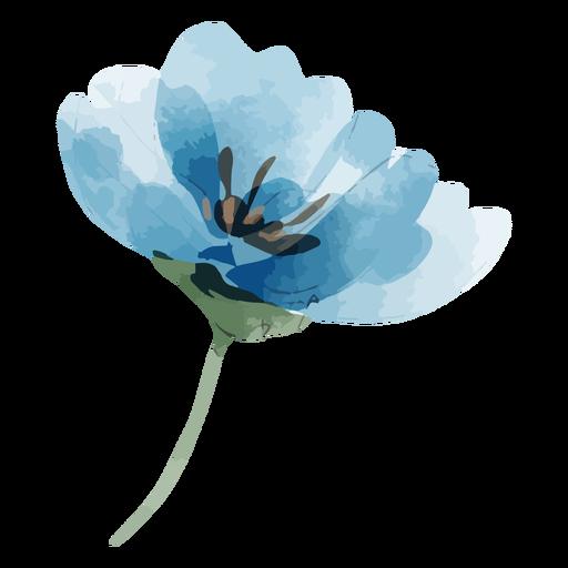Perennial flax flower watercolor