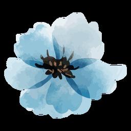 Aquarela de linho perene de flor