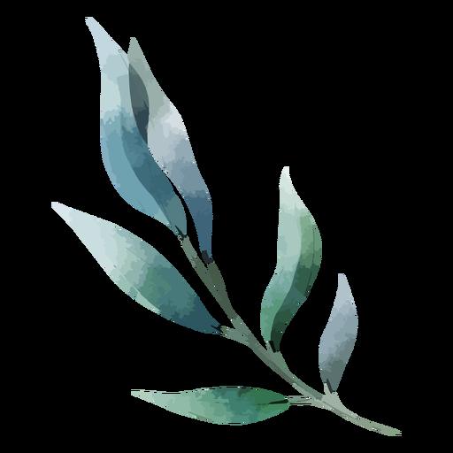 Watercolor long leaves