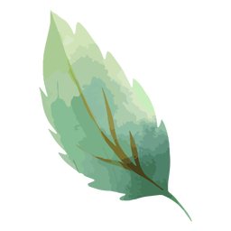 Tree leaf watercolor