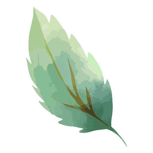 Acuarela de hoja de árbol