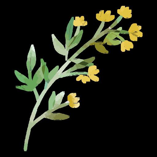 Galho de aquarela com folhas