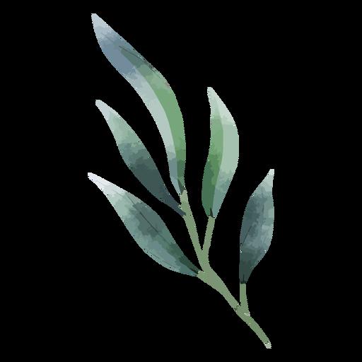 Aquarela de galho de árvore