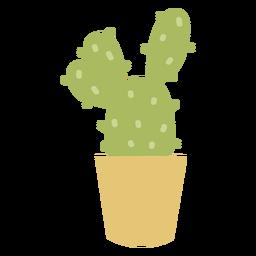 Planta de desierto cactus plano