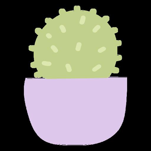 Maceta cactus pequeña plana