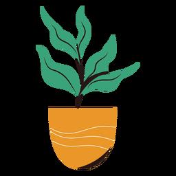 Plant in pot flat