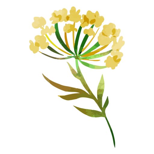 Lovely watercolor yellow flowers