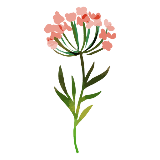 Acuarela flores rojas