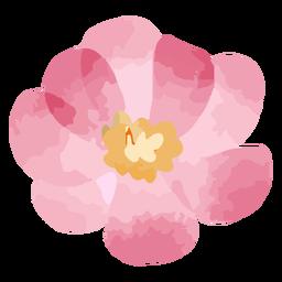 Acuarela de flor rosa