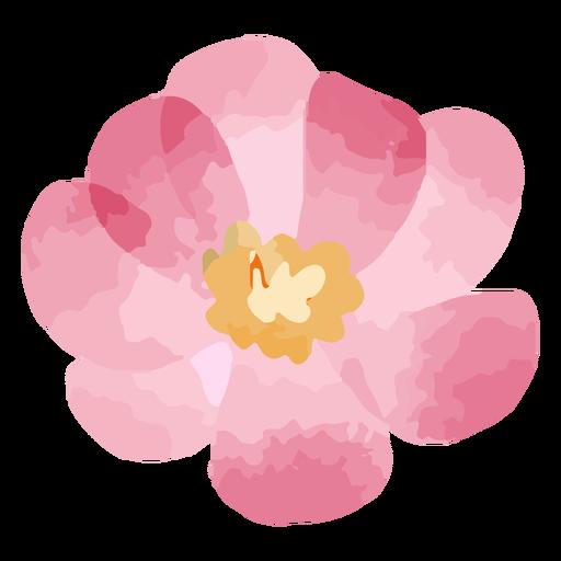Pink bloom watercolor