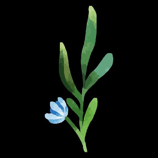Watercolor branch blue flower
