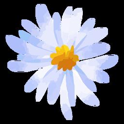 Acuarela de flor de margarita púrpura