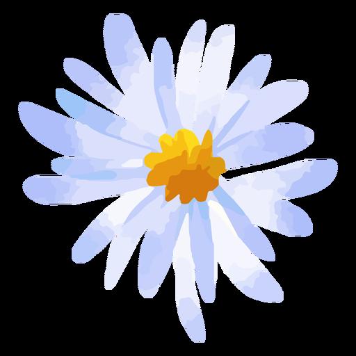 Purple daisy flower watercolor