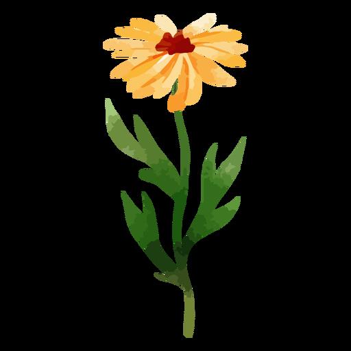 Long stem sunflower watercolor