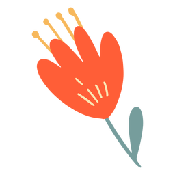Orange flat flower