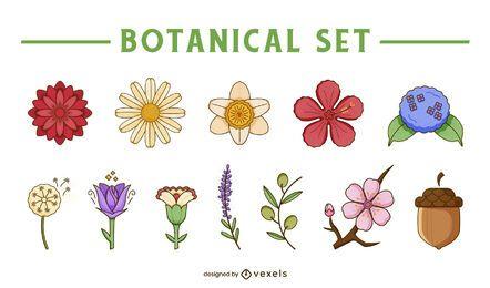 Conjunto botânico