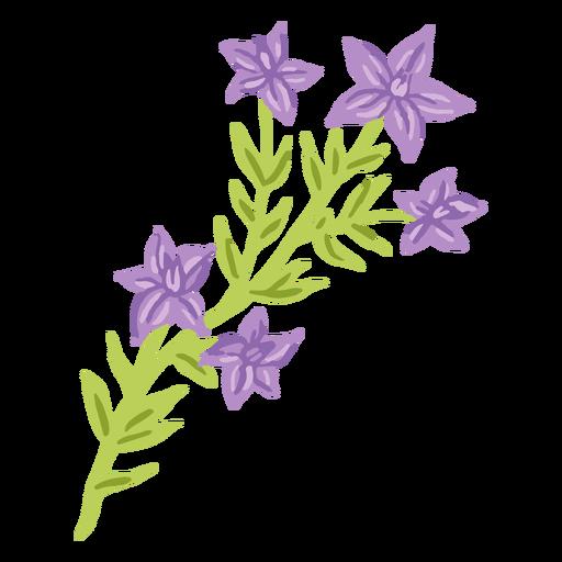 Flor morada hojas planas