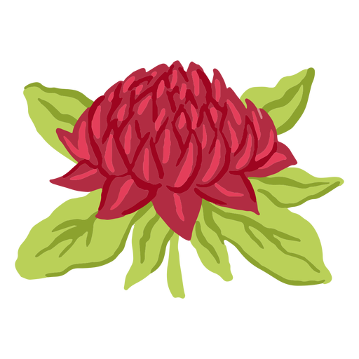 Semiplano de flor roja grande