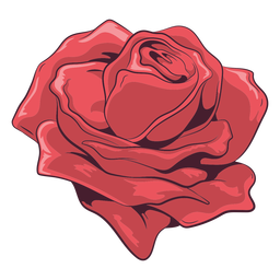 Lovely rose illustration