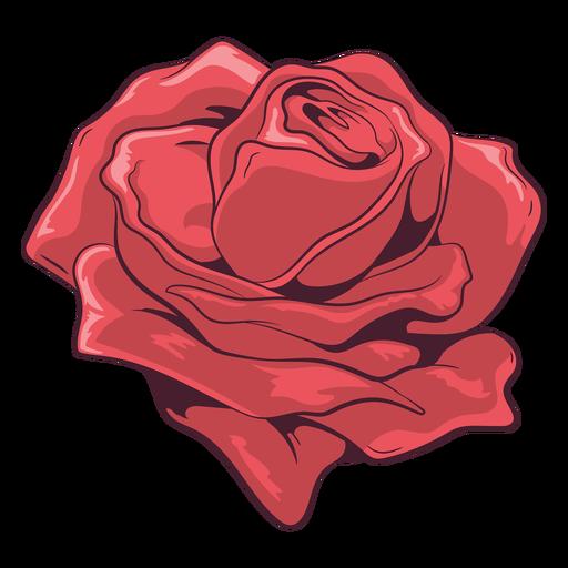 Ilustração de linda rosa