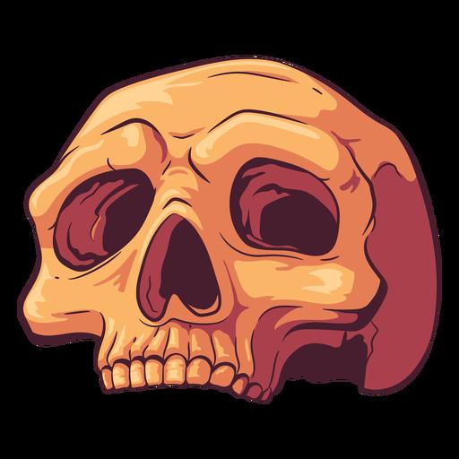 Ilustración de cráneo antiguo